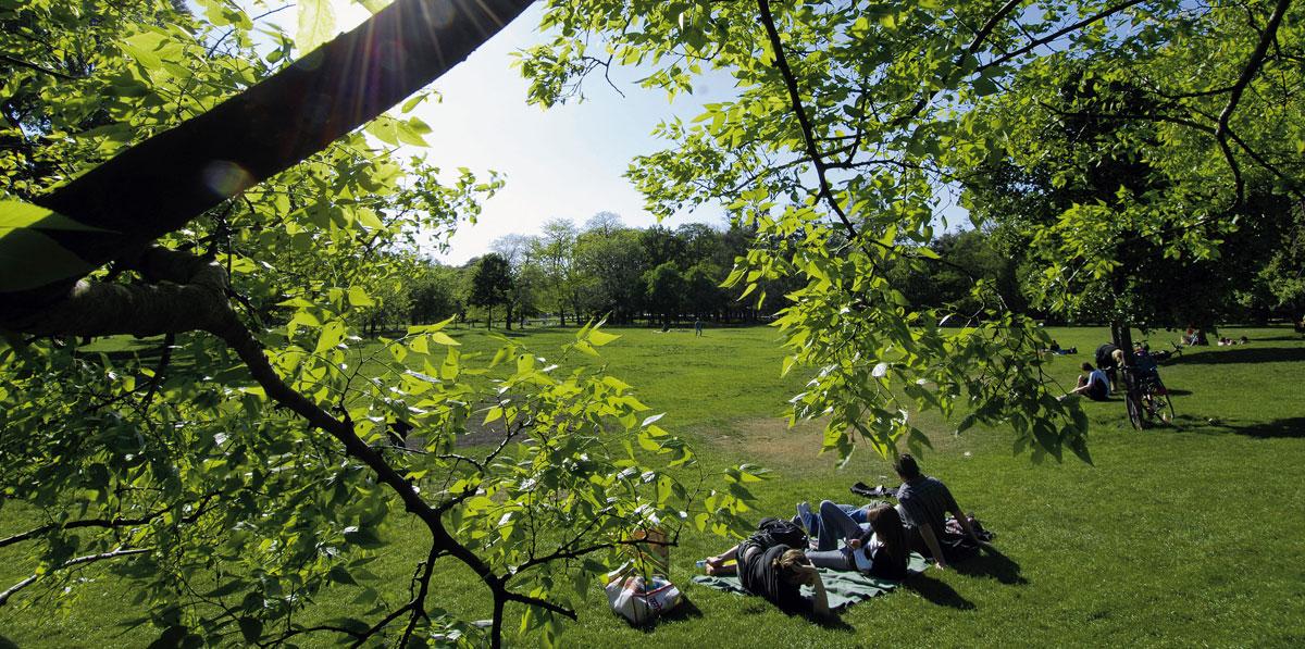 Frühling in Wien: Entspannen im Grünen Prater