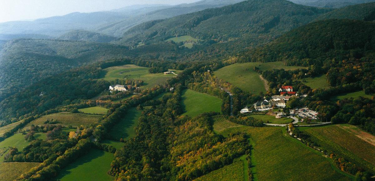 Der Wienerwald trägt seinen Teil dazu bei, dass Wien zu einer der lebenswertesten Städte der Welt zählt.