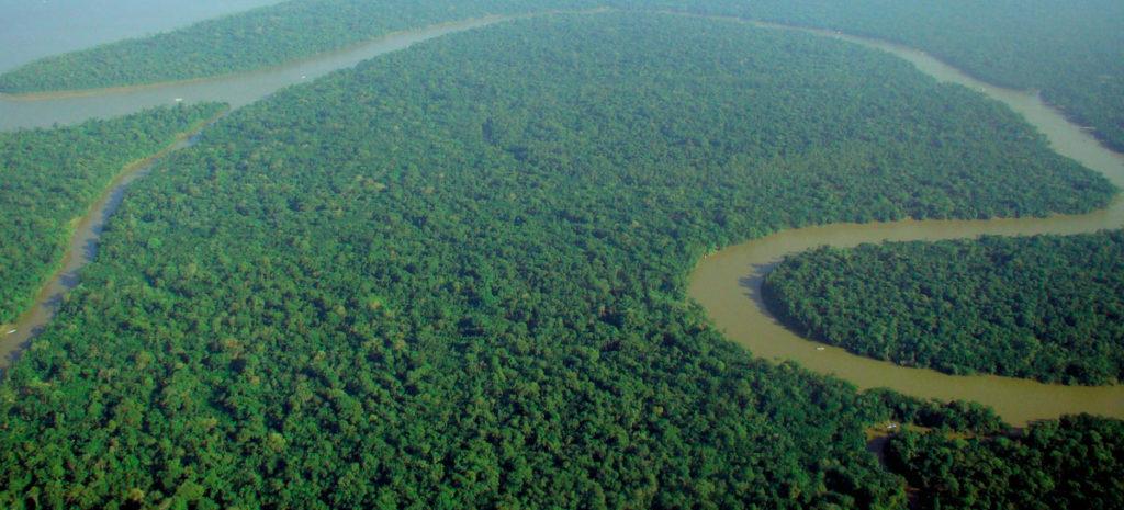 Auch der Regenwald am Amazonas ist von der Viskoseherstellung bedroht.