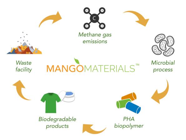 Der Lebenszyklus des neuen Methan-Materials von Mango Materials.