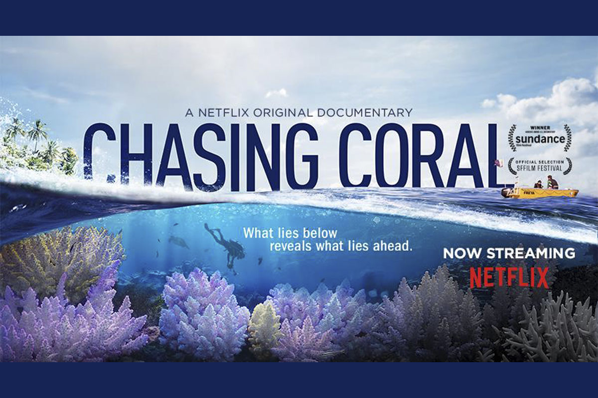 ChasingCoral